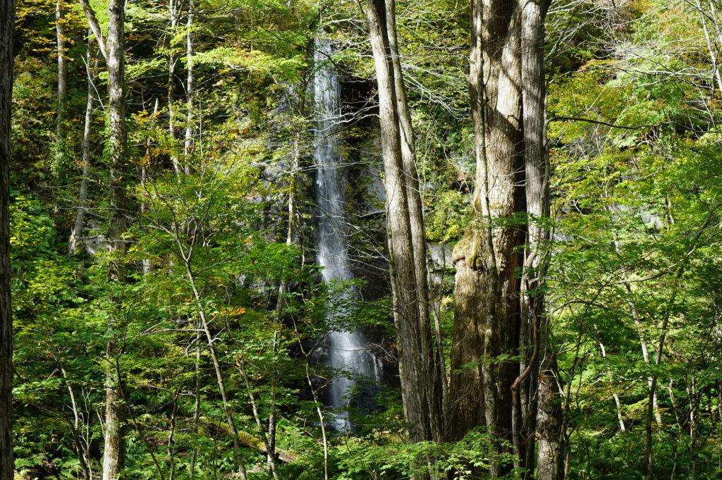 奥入瀬渓流 白糸の滝